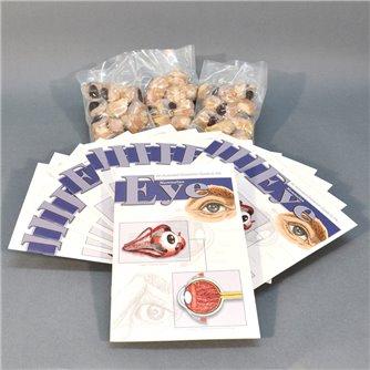 Eye Economy Class Pack
