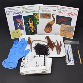 Basic Zoology Kit