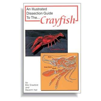 Dissection Guide - Crayfish