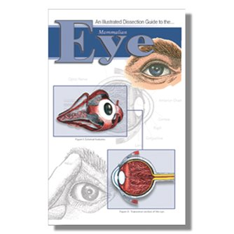 Dissection Guide - Mammalian Eye