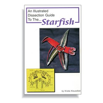 Dissection Guide - Starfish