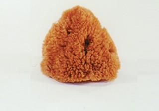 Sponge - Comerical, Dry