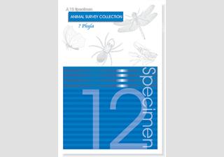 12 Specimen Survey Guide