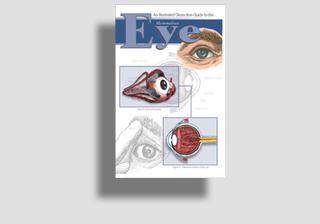 Mammalian Eye