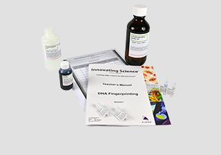 DNA Fingerprinting Electrophoresis